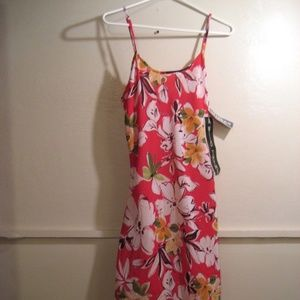 A WILD THYME, womens dress size 10 misses, new wit